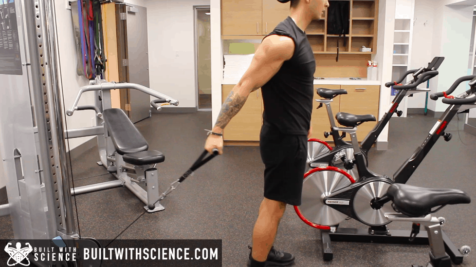 cable curls exercise
