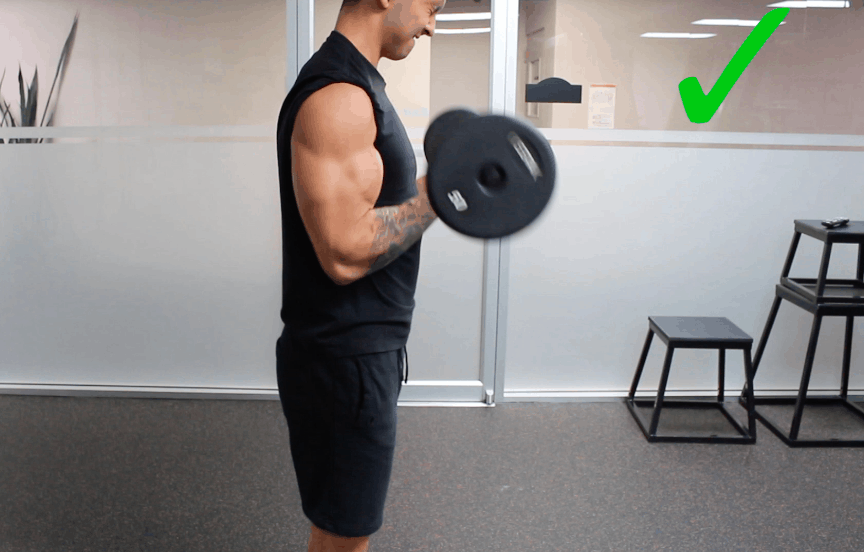 bicep curls correct form