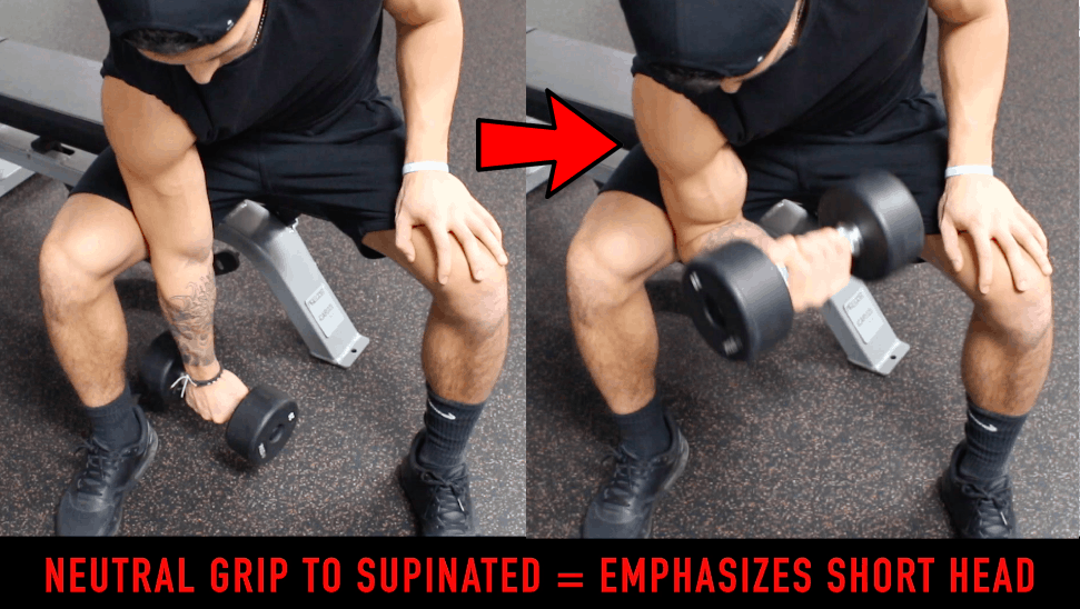 supination of wrists for bicep peak