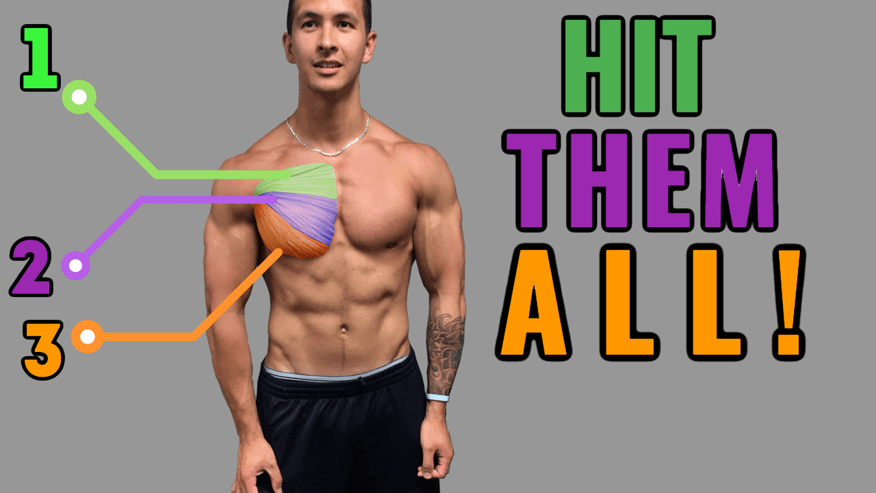 Best Science Based Chest Workout Thumbnail