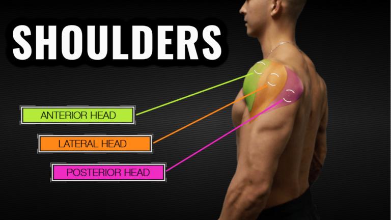 best shoulder workout for mass thumbnail