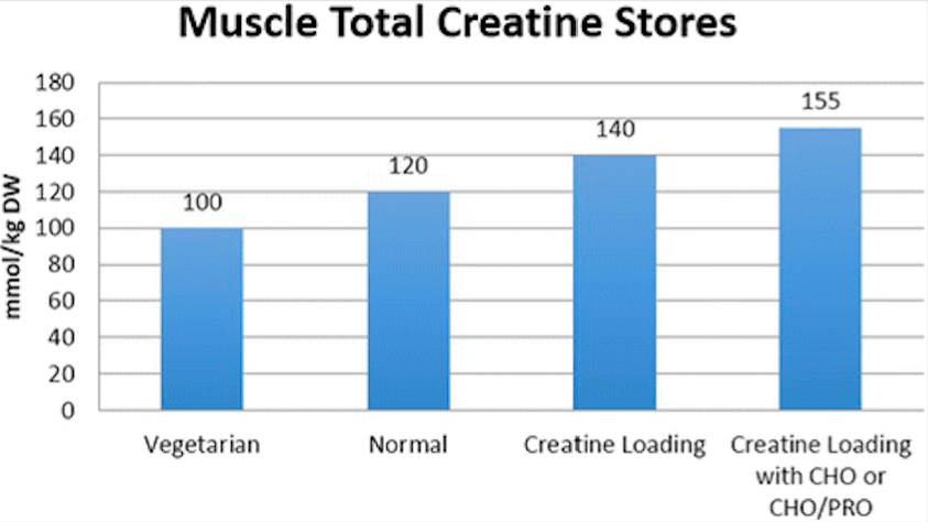 how to use creatine graph