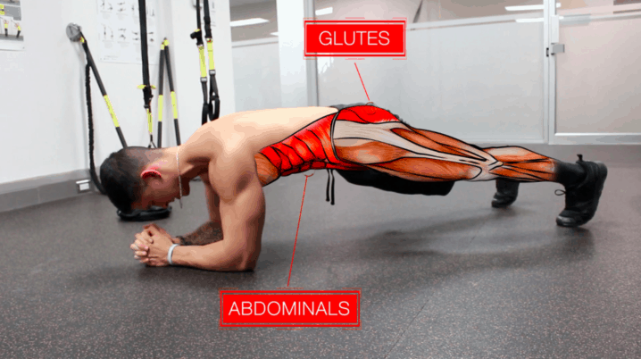 glutes and abdominals