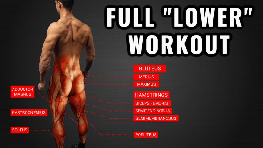 lower body workout (legs workout) thumbnail