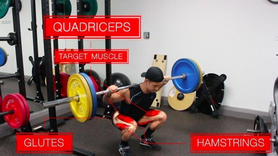 barbell back squat lower body exercise