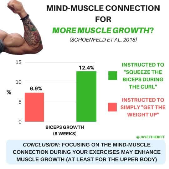 biceps growth study