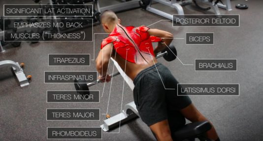 best back workout