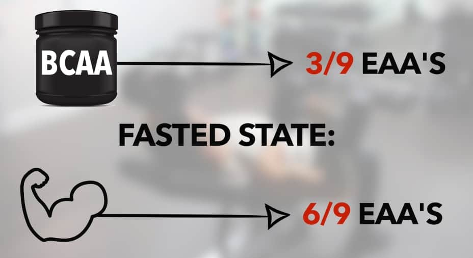 bcaas intermittent fasting