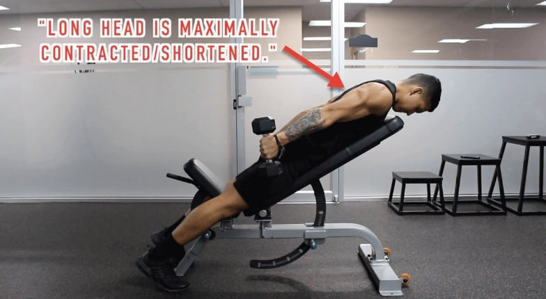 Swell The Best Tricep Workout Exercises For Long Heads Pabps2019 Chair Design Images Pabps2019Com