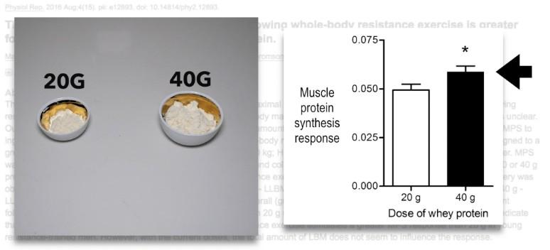 40g vs 20g whey protein