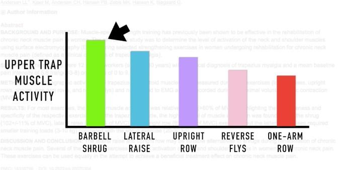 barbell shrugs study