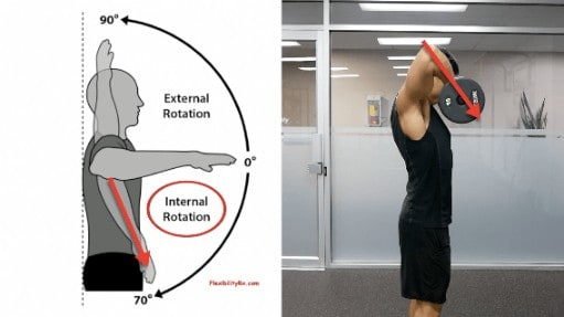 upright row internal rotation