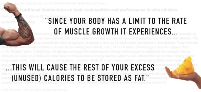 lean bulking calories