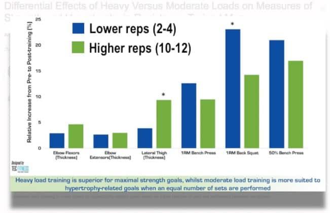筋肉の成長と強さのグラフの高担当者と低担当者