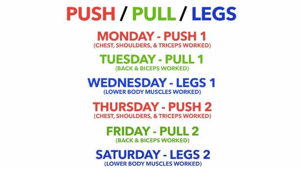 push pull legs 6 day workout split