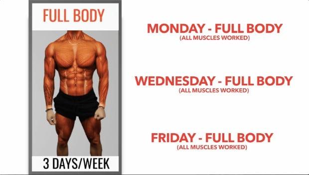 full body workout split