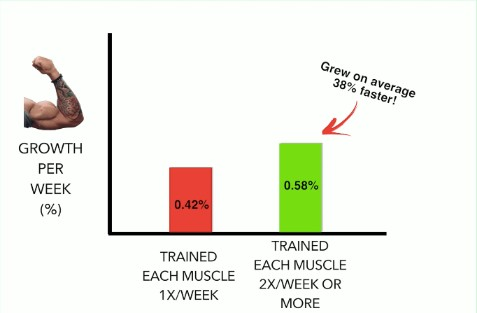 The Best Workout Split to Maximize Growth