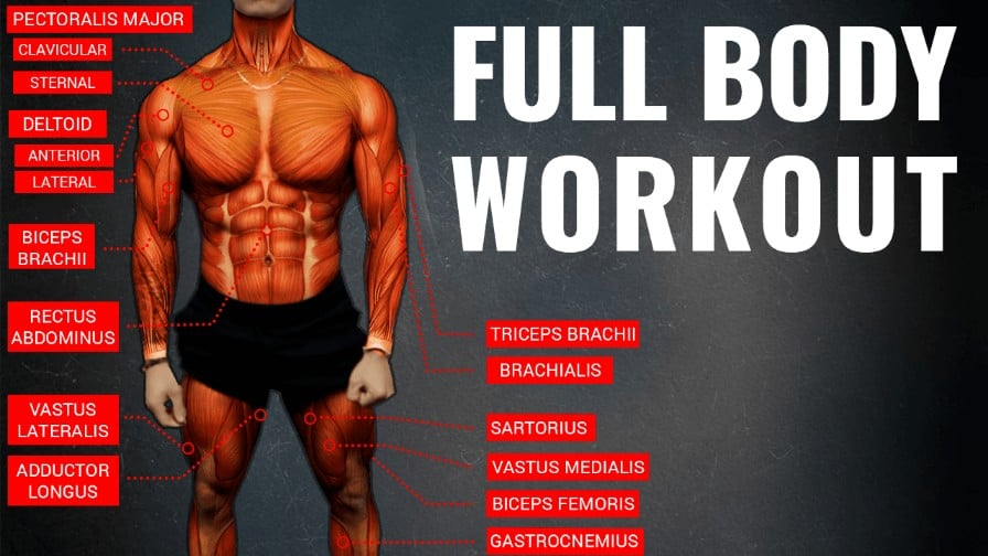 full body workout A thumbnail-min