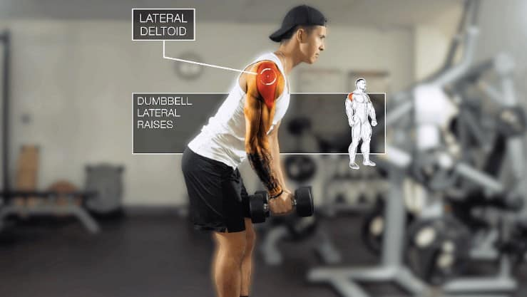 dumbbell lateral raises