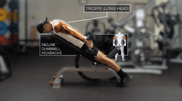 incline dumbbell kickbacks