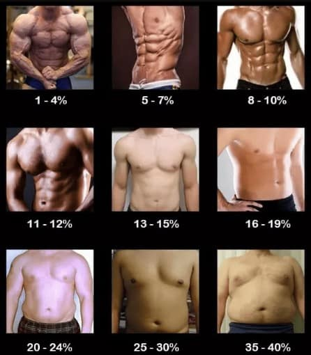100 Pack Abs Real