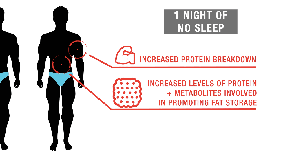 bodybuilding sleep