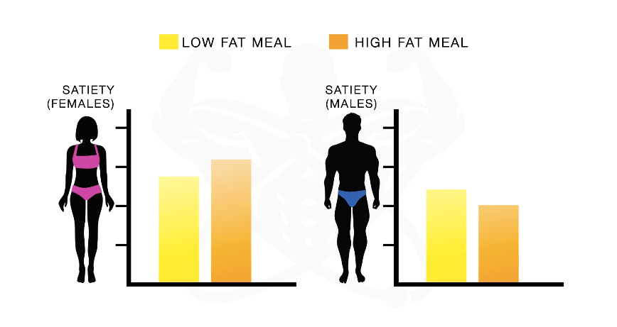 high fat diet to lose weight