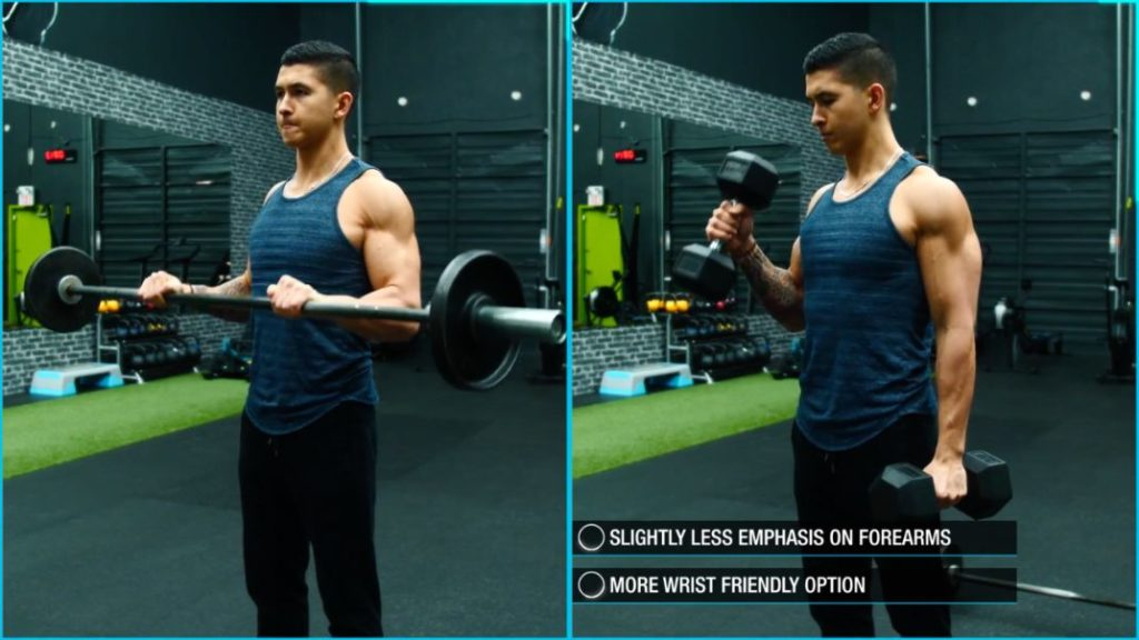 Best forearm exercises supinated grip
