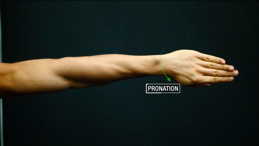 Forearm pronation