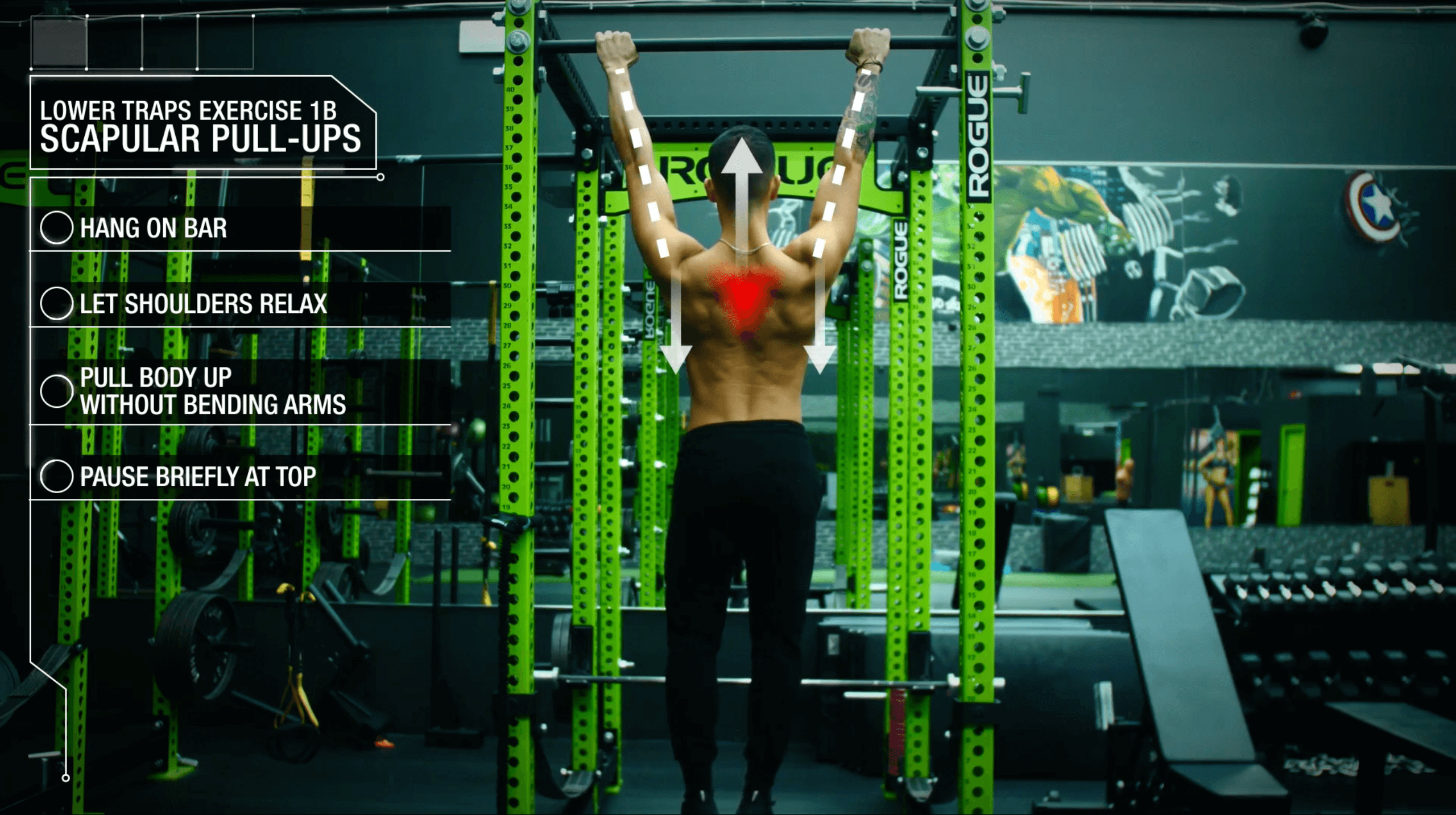 How to correct muscle imbalance lower traps scapular pull ups 2
