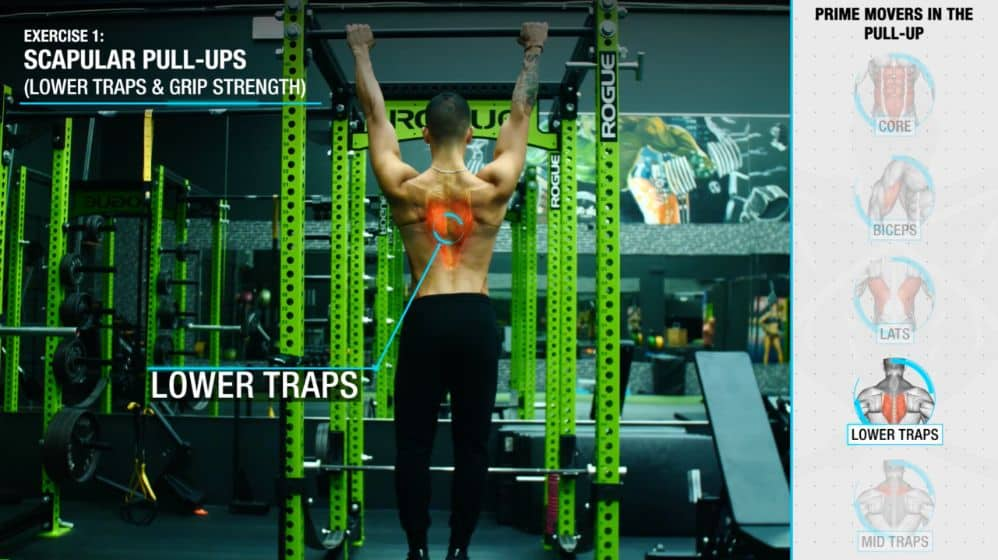 How to increase pull-ups scupular pull ups