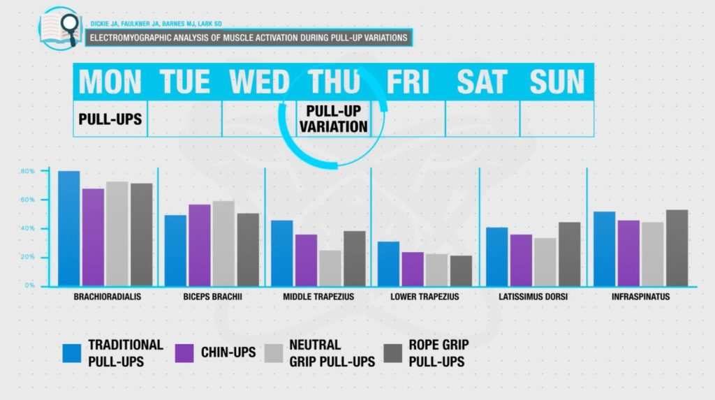 Pull up workout programming