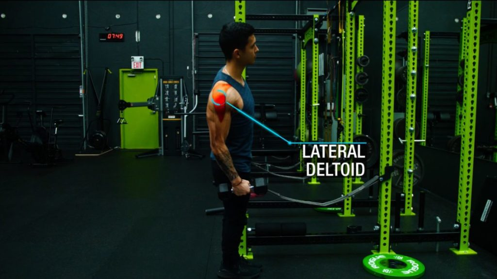 Push pull legs lateral raises