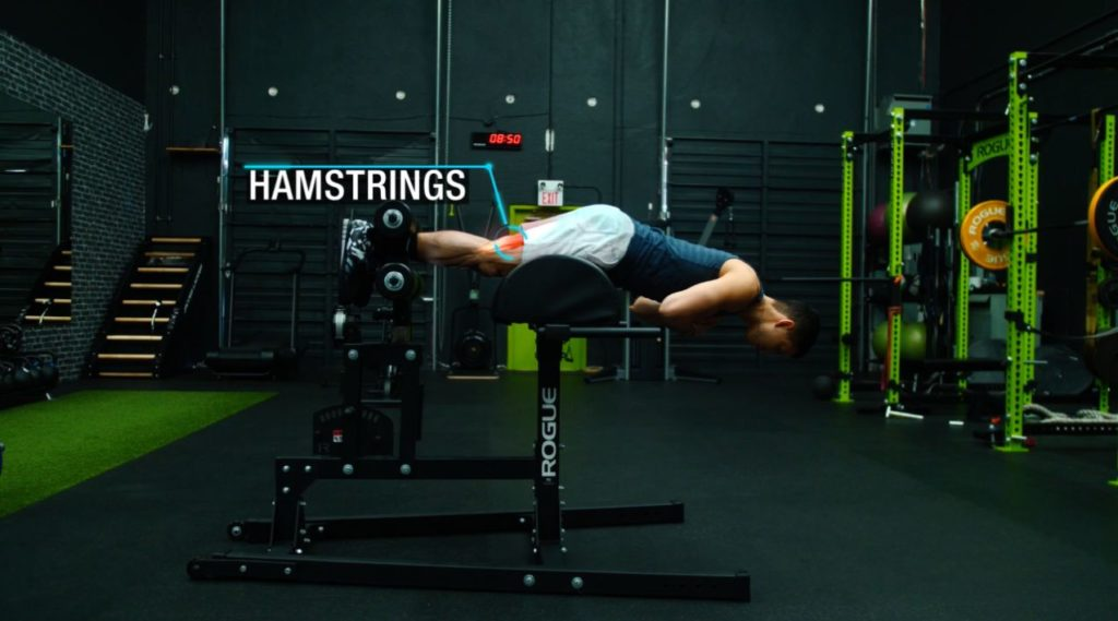 Push pull legs routine glute ham raise