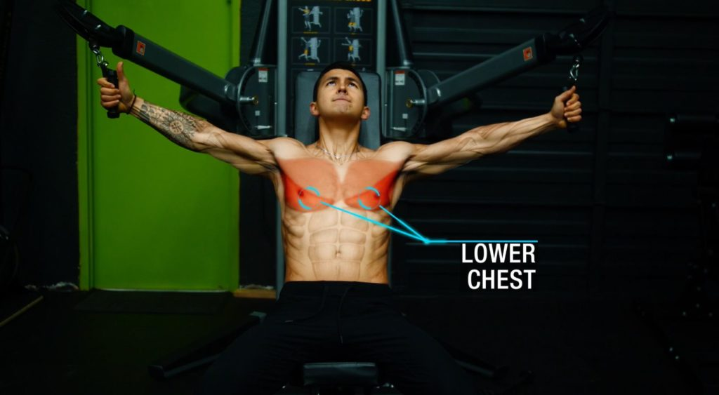 Push workout for mass lower chest
