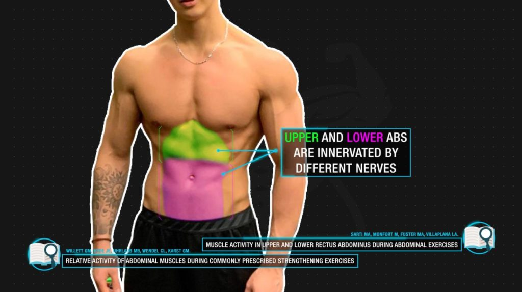 Upper and lower abs activation