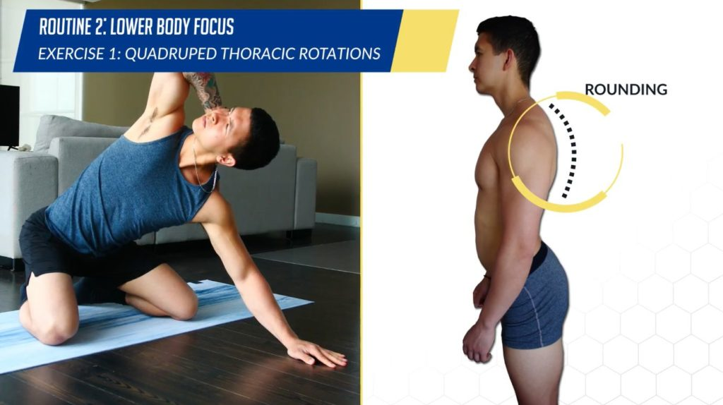 Posture correction routine exercise quadruped thoracic rotations