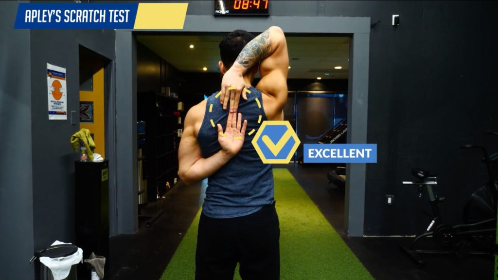 Mobility test for the shoulders