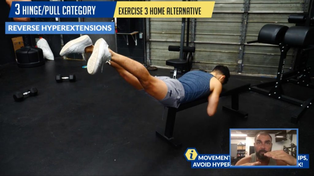 Reverse hyperextensions home alternative