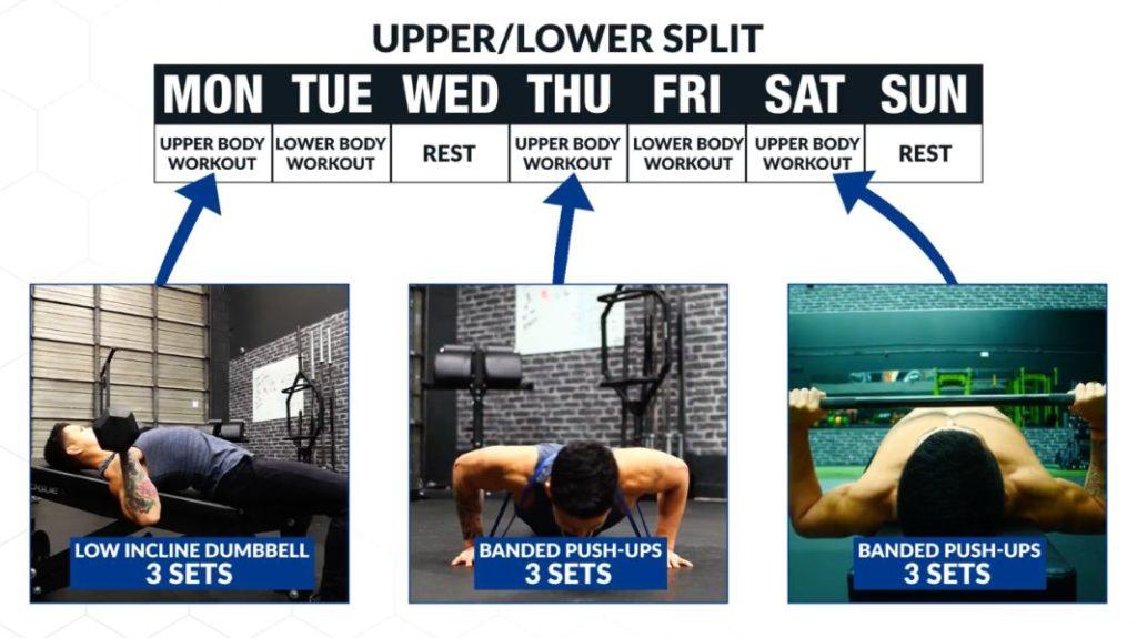 Upper lower split for big biceps