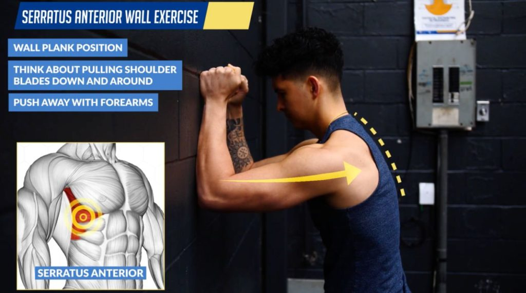 Serratus anterior wall exercise