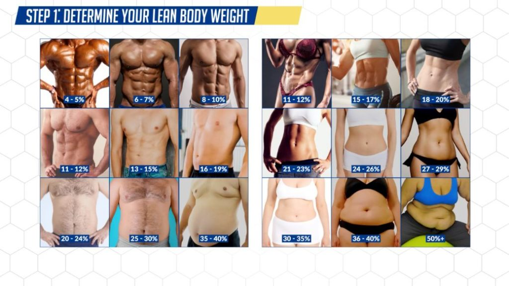 Determine your lean body weight to calculate how long it'll take for your abs to show