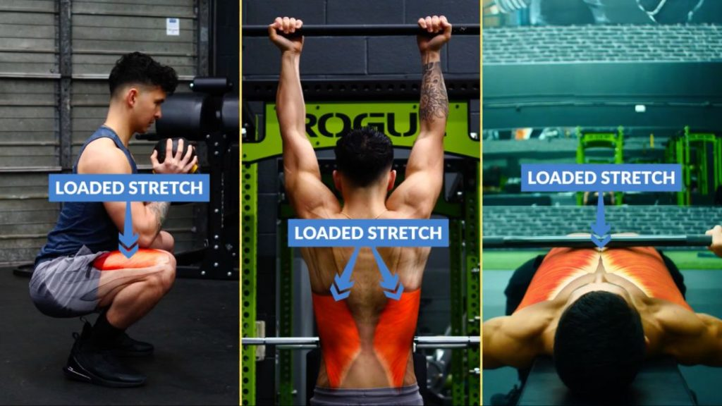 How to build muscle fast by emphasizing loaded stretch