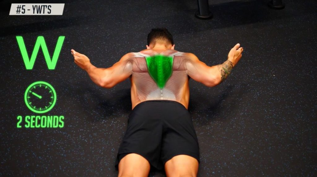 Hold the W position or 2 seconds to strengthen your back muscles